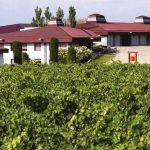 Vinhos da Rioja, Espanha