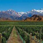 Viagem à Argentina - Mendoza e Salta