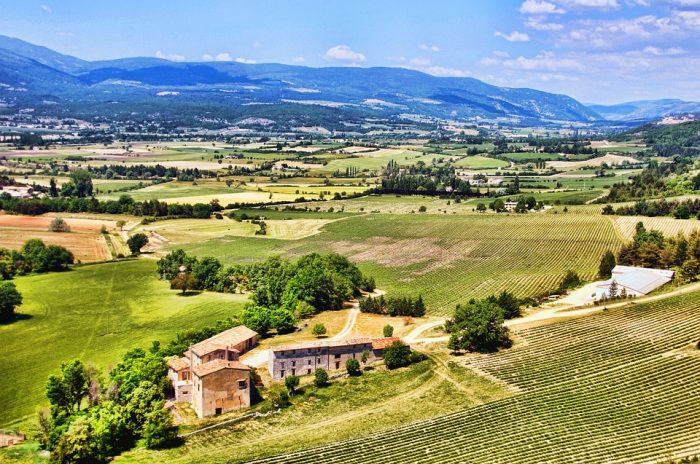Um verão com brancos do Sul da França