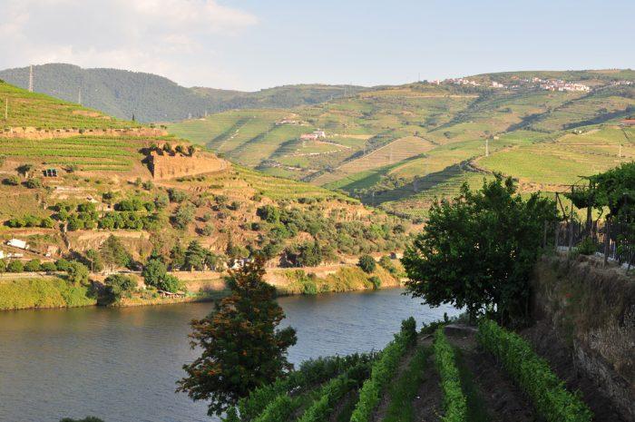Masterclass Uma viagem ao Douro