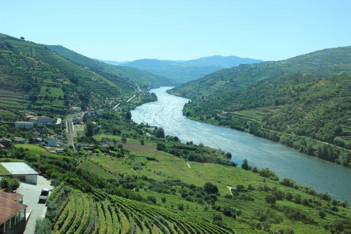 Douro e Ribeira del Duero, navegando pelo rio e conhecendo suas castas e vinhos
