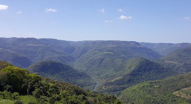Vinhos de Santa Catarina - ONLINE