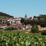 Curso Vinhos da Borgonha