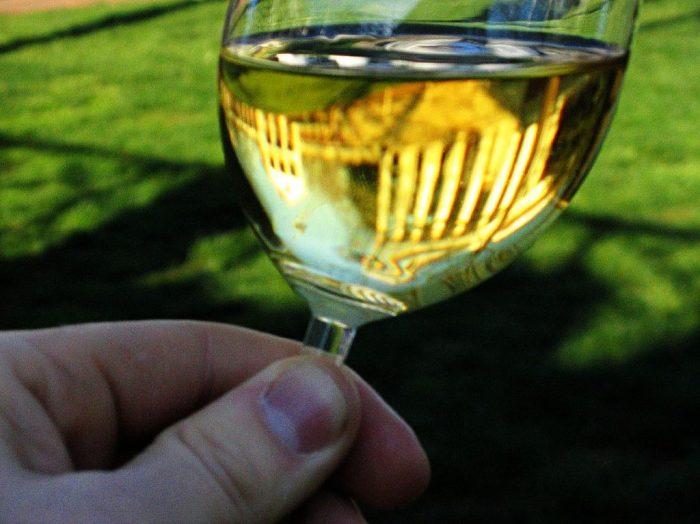 O Vinho e sua Degustação - ONLINE AOS SÁBADOS