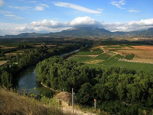 A nova Rioja