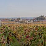 Tour de France: além de Bordeaux e Borgonha