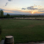 Diário da viagem a Mendoza