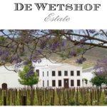 África do Sul: 361 anos de tradição vitivinícola - CURSO ONLINE