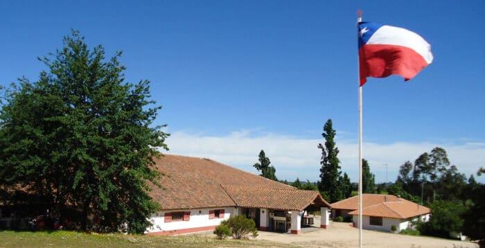 Brindando com o Produtor – Vinhos Novo Chile e Vinícola Erasmo