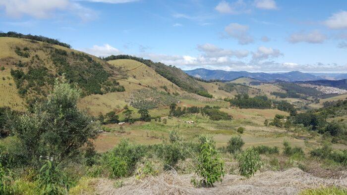 Caminhando entre olivais e vinhedos na Serra da Mantiqueira - 2ª EDIÇÃO