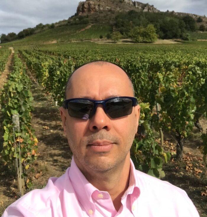 Descortinando o novo Mâconnais e seus excelentes vinhos de Chardonnay